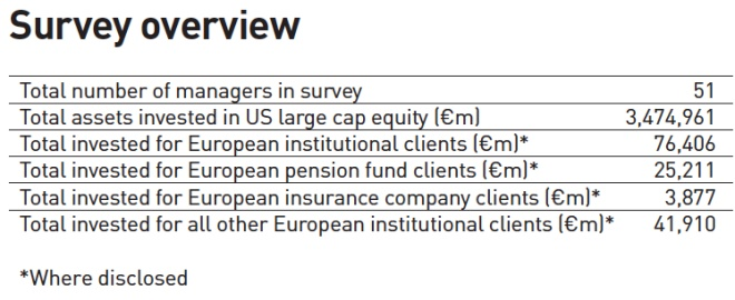 survey overview us large cap equity managers