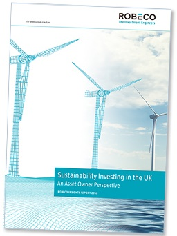 sustainability investing in the uk an asset owners perspective