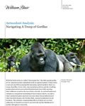 william blair navigating a troop of gorillas