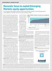 domestic focus to exploit emerging markets equity opportunities