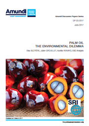 palm oil the environmental dilemma