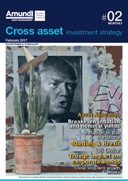 cross asset investment strategy february 2017