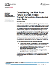 considering the risk from future carbon prices