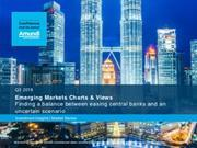 emerging markets charts and views q3 2019