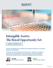 Intangible Assets: The Royal Opportunity Set