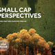 small cap perspectives russell 2000 index 1 q2017 analysis
