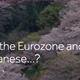 Are the Eurozone and ECB turning Japanese…?